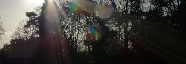 fractionating light