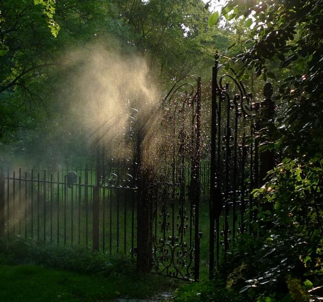 Garden Secret