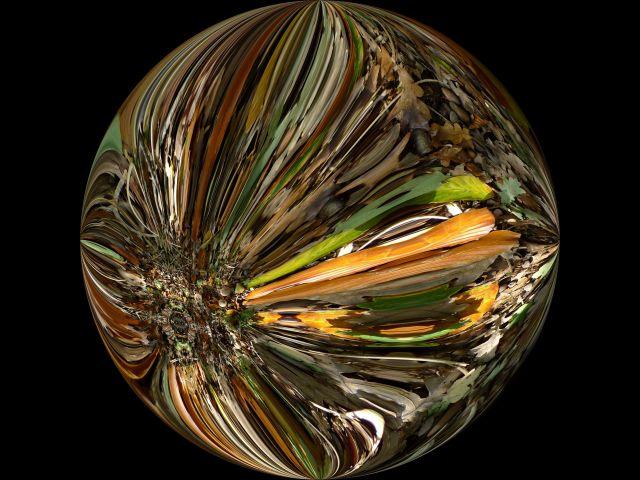 dinsd 29 10 13 240 rich tapestry warp round