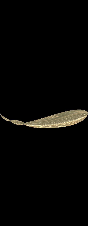 albino dragon golf warp round warp round