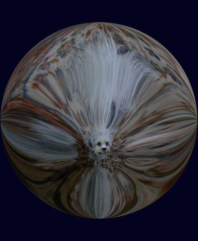 mon okt7 Adorable Tammie round warp round